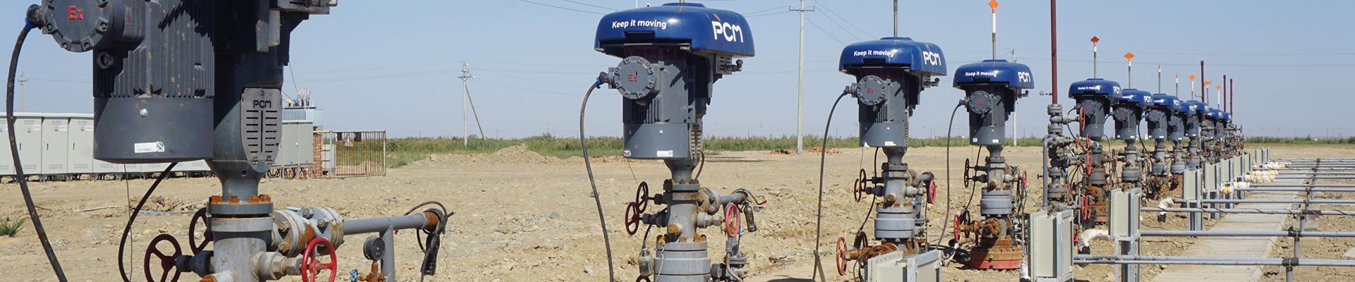PCM Artificial lift solutions