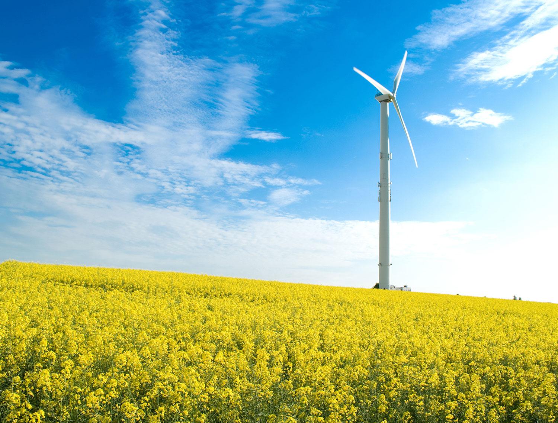 """""""可持续性发展的选择 新能源行业必须综合考虑环境责任与现实世界的经济状况,以便满足其可持续性发展的承诺。工业工艺流程要求泵送系统能够精确可靠地处理各种流体包括高含固量物料,并确保成本控制。"""""""