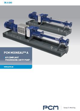 Catálogo bombas estandares API - PCM Moineau™ A